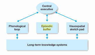 multistore model evaluation Evaluation - working memory model  evaluation: working memory  and covers the gaps in which the multistore model could not explain.