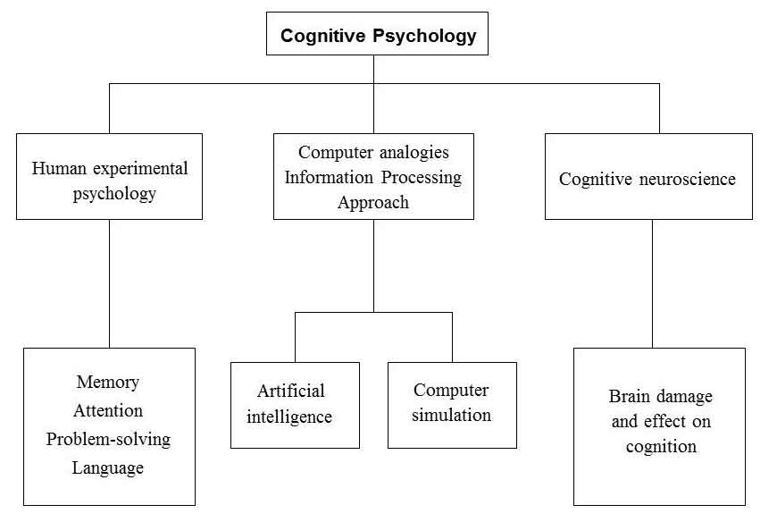 cognitive psychology sub topics