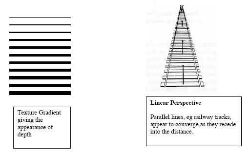 Linear Perspective Psychology Example Simply Psychology
