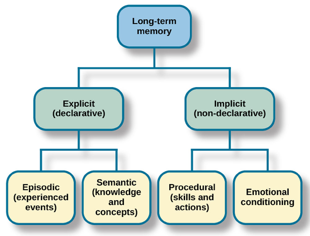 There are two components of long-term memory: explicit and implicit. Explicit memory includes episodic and semantic memory. Implicit memory includes procedural memory and things learned through conditioning.