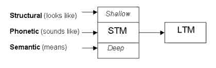 levels of processing memory model