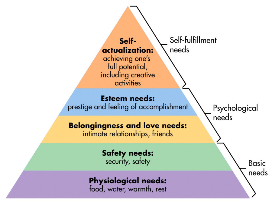 carl rogers hierarchy of needs