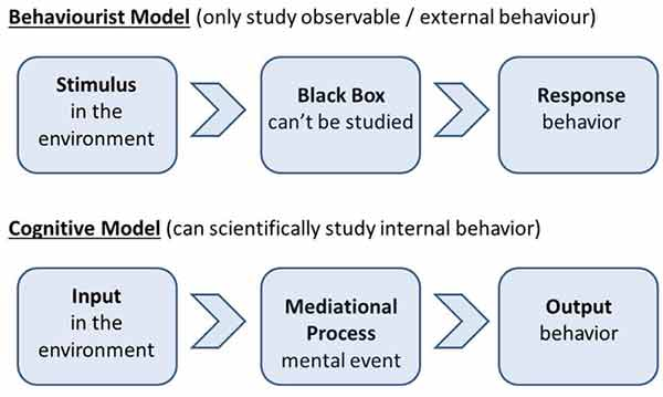 evaluation and problems in cognitive modelling A new model of the question answering process cognitive, and other processes how do students understand the question/problem furthermore, the models now used.