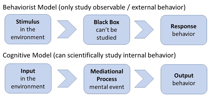 mediational processed in cognitive psychology